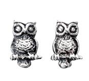 Charming Sterling Silver Owl Stud Earrings