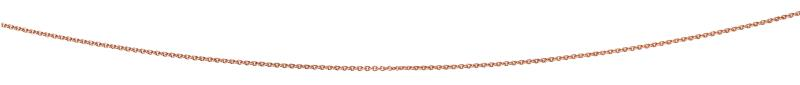 Rose Gold Plated 56+5Cm Curb Chain