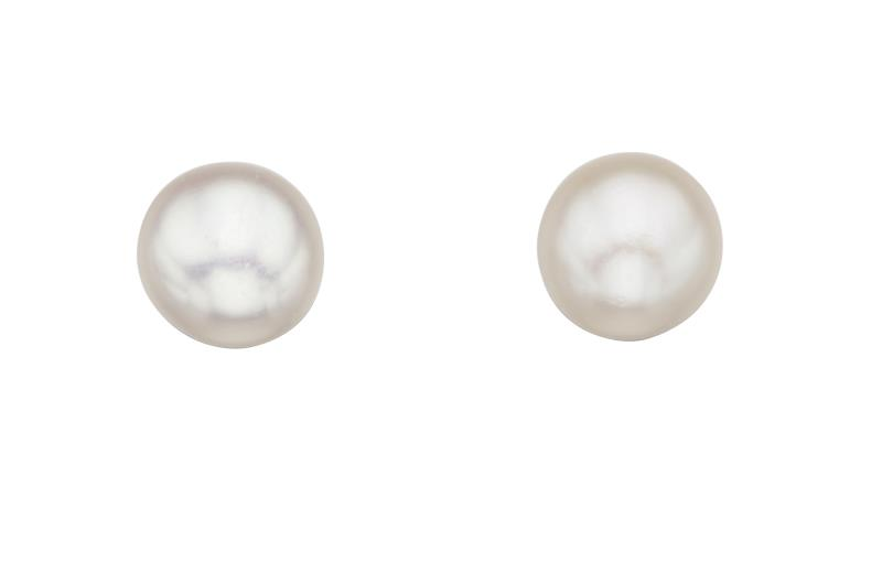 Shell Pearl Stud Earrings
