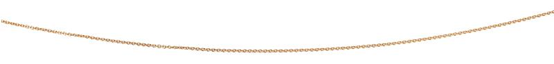 Gold Plated 56+5Cm Curb Chain